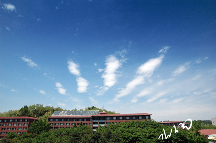 대전 하늘